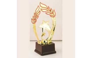 Trophy TAJ-25-480