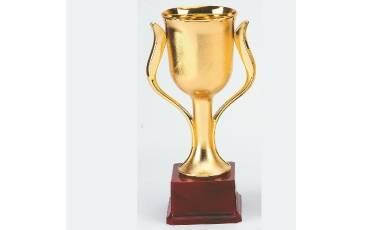 Trophy TC-560