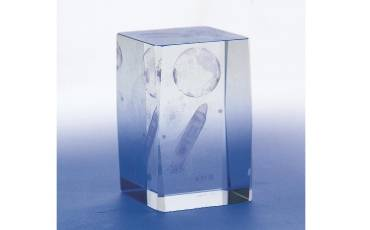 Paper Weight Crystal Glass Clear With Self Designed 6x4 CM